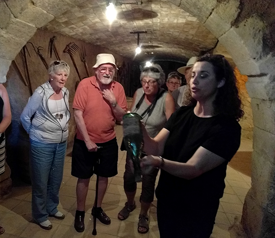 wine-cellar-2.png